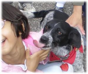Pampa lèche une petite fille aux chiens visiteurs