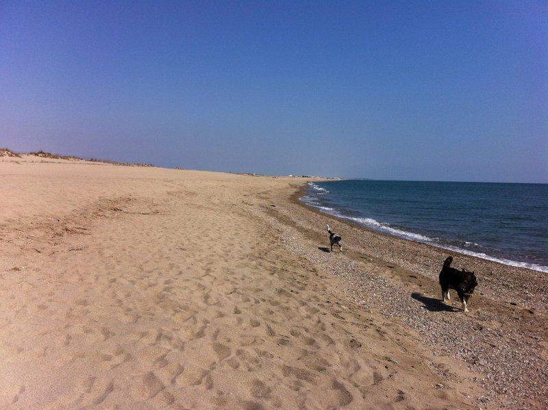 La plage qui longe le camping