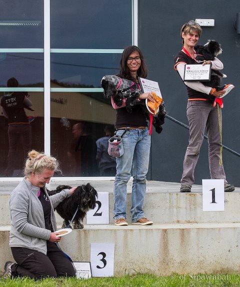 podium microdog