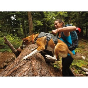 Harnais de grande randonnée Ruffwear, avec prise plus ou moins large pour aider le chien