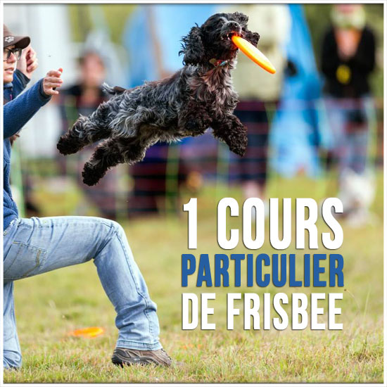 coaching individuel de frisbee canissimo ducation canine lyon loisirs et sports canins. Black Bedroom Furniture Sets. Home Design Ideas